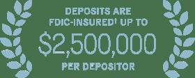 Deposites are fdic-insured up to $2 million per depositor